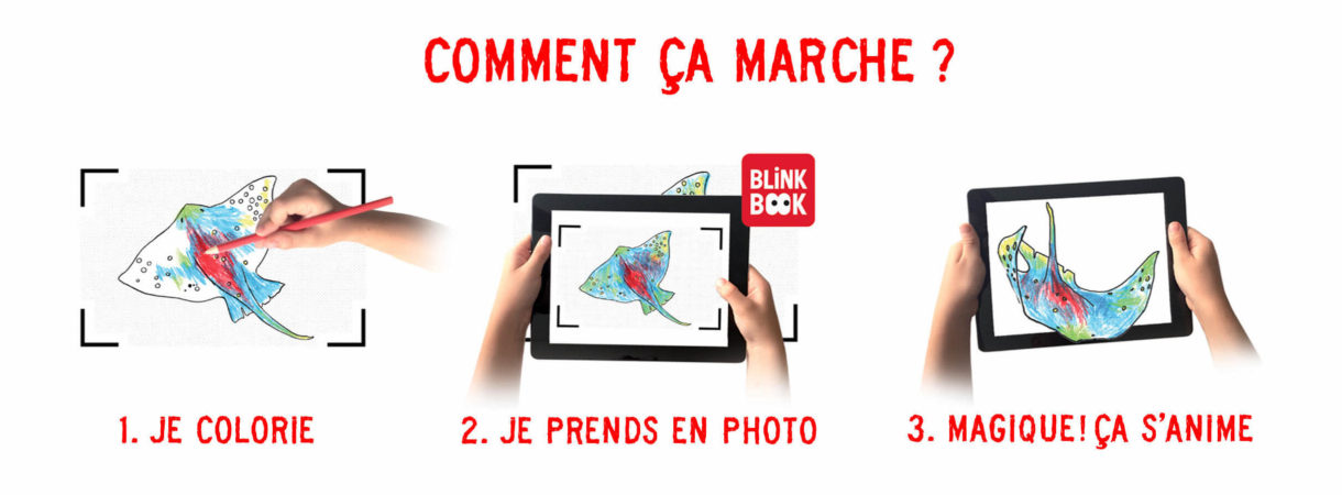 Blinkbook - comment ca marche ?