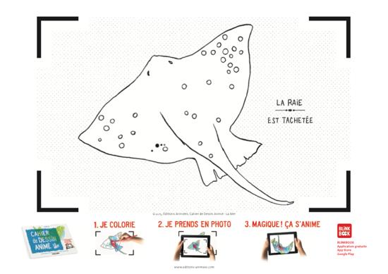 Coloriage à imprimer - Éditions Animées - Blinkbook - Mer